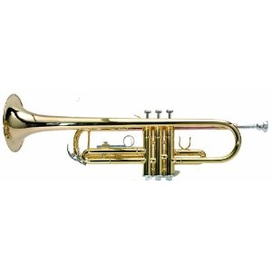 TR10 Bb TRUMPET ASHTON with CARRY CASE & CLEANING CLOTH