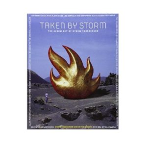 taken by storm book